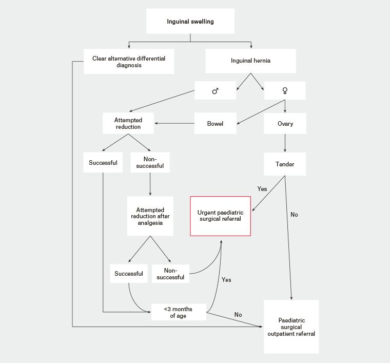 Figure 2. Flow diagram for the clinical management of a paediatric inguinal hernia.