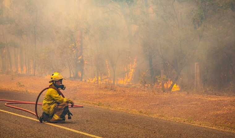 Firefighter in bushfire