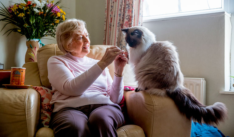 Older woman at home with her cat.