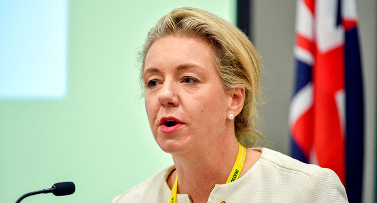 Minister for Regional Services Bridget McKenzie believes 'communities are increasingly becoming empowered to take action at the local level' to tackle substance misuse. (Image: Mick Tsikas)