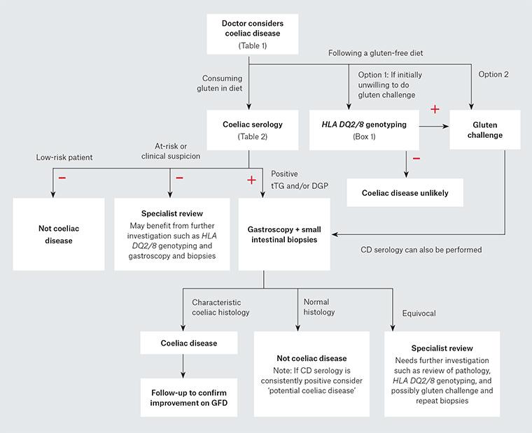RACGP - Interpreting tests for coeliac disease