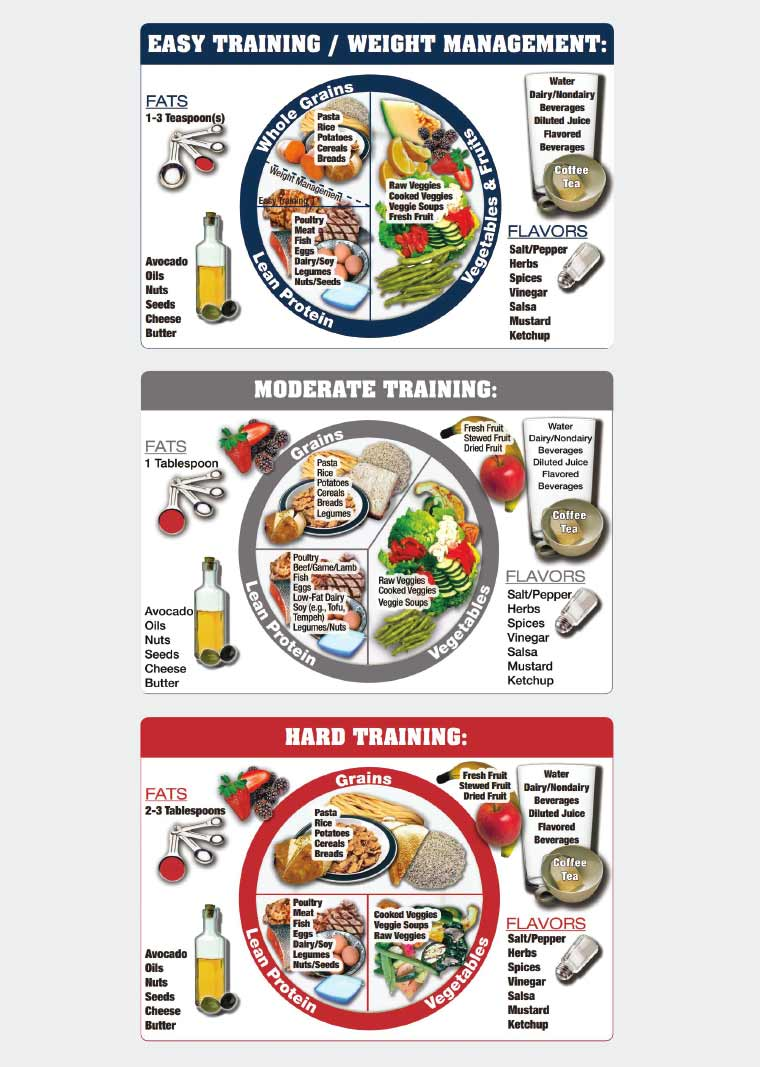 Figure 1. The Athlete's Plate nutrition education tool (diagram).