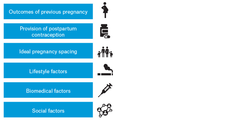 Figure 1. Components of the interconception care discussion (chart).