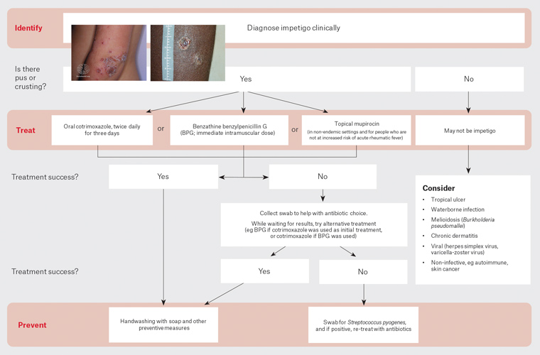 Figure 2. Guidelines for management of skin sores