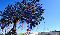 A tree sculpture was constructed outside of Parliament House as a memorial to victims and survivors of institutional child sexual abuse. (Image: Lukas Coch)