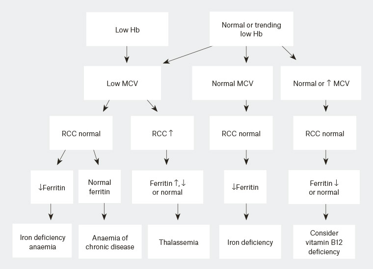 RACGP - Anaemia in pregnancy