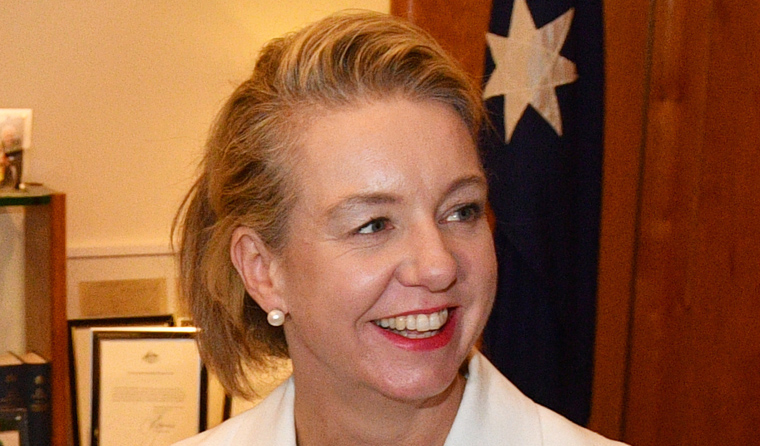 Senator Bridget McKenzie is also deputy leader of the National Party. Image: AAP/Mick Tsikas