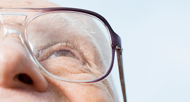 Age-related macular disease is the leading cause of blindness and severe vision loss in Australia.